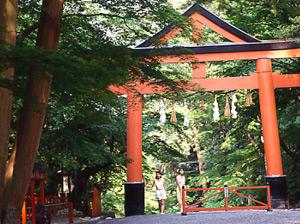 滋賀 日吉 神社