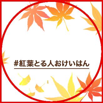 【オンライン開催】桜とる人、おけいはんフォトコンテスト2021